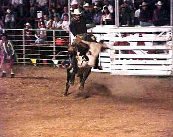 Kueckelhan Ranch Rodeo To Begin July 25 North Texas E News