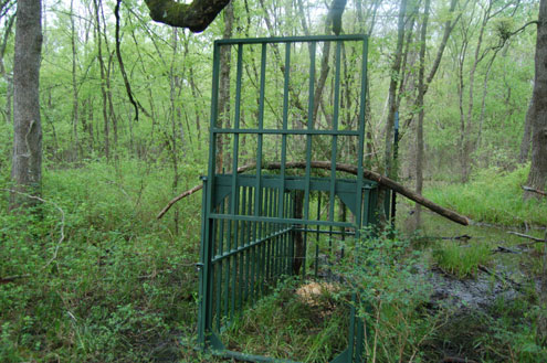 Build Deer Trap http://www.ntxe-news.com/cgi-bin/artman/exec/view.cgi?archive=40&num=64305