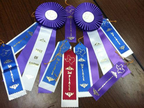 Ector High School junior class excels at Fannin County Fair
