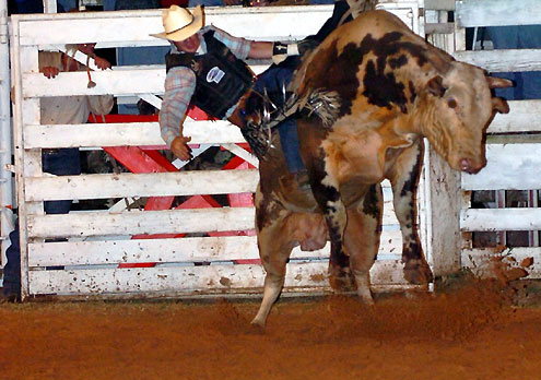 Kueckelhan Ranch Rodeo To Pay Tribute To Founder North
