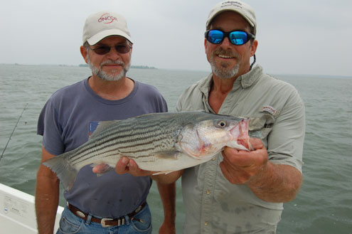 Lake whitney mecca for striped bass fishing north texas for Lake whitney fishing guide